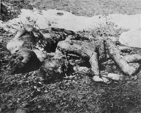 Executed_prisoners_in_Jasenovac