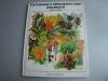 Putovanje-u-nepoznati-svet-insekata-Mravi-i-pcele_slika_O_71399685