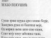 Pesme-Zehbo-štampa-11