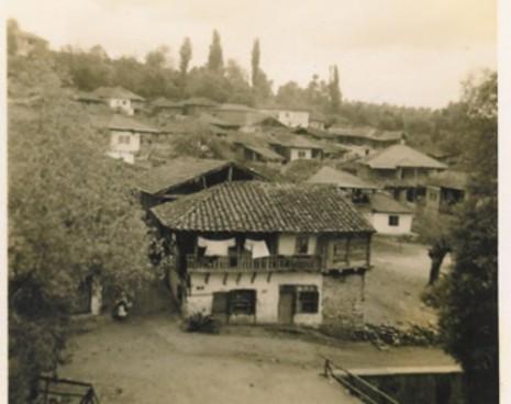 1954_083-500x396