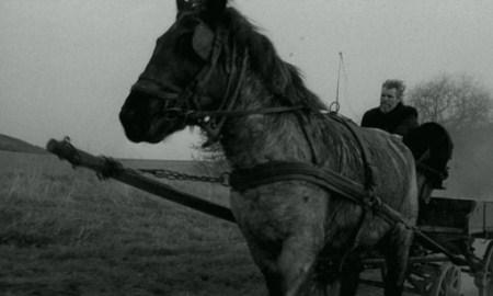 """Torinski konj"" – Bela Tar"