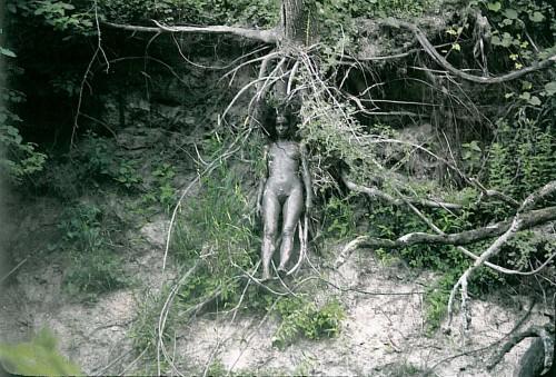 Ana Mendieta Tree of Life 1979
