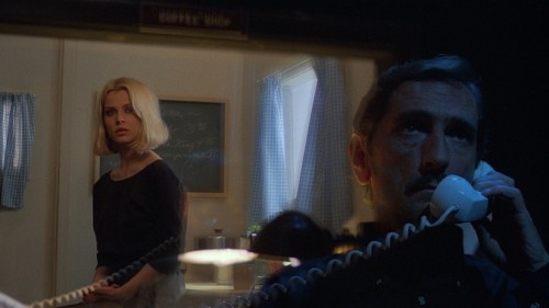 "Wim Wenders, ""Paris, Texas"" (1984)"