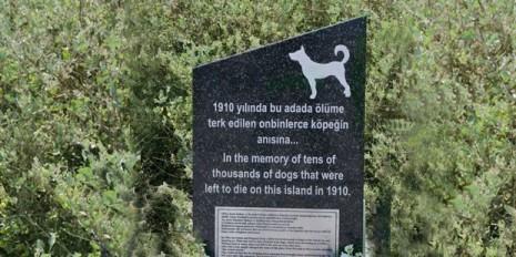 3-haziran-1910-sivriada-köpek-katliamı_356459