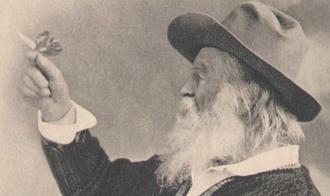 5-walt-whitman-and-the-but