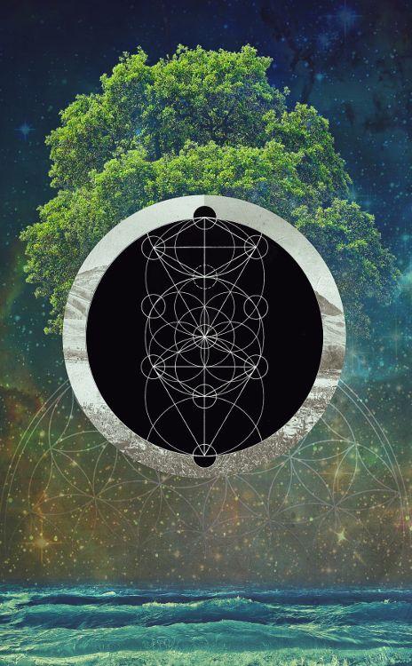 Tree of Life ~ Filip Aura Mensl