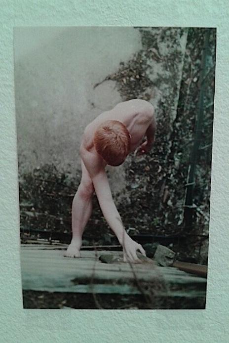 Fotografija Volfganga Tilmansa sa izložbe u Geteborgu