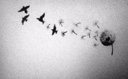 Dosada i uzbuđenje – Bertrand Rasel: Osvajanje sreće