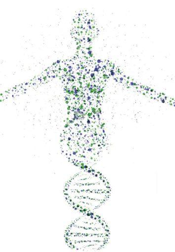 bioetika 1