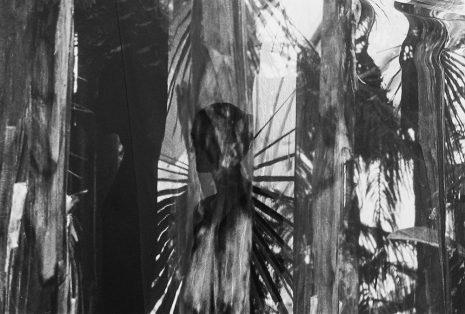 Marija Labudović-Untitled expirience, analogna fotografija