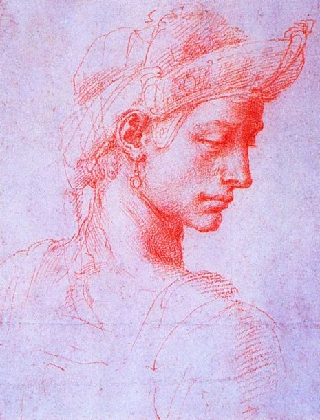 Michelangelo-ideal-head-stu
