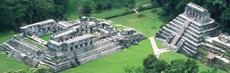 palenque-pticja-perspektiva
