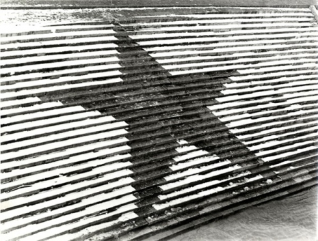 gabor-attalai-negative-star-1970-bw-photograph-392-x-301-mm-marinko-sudac-collection