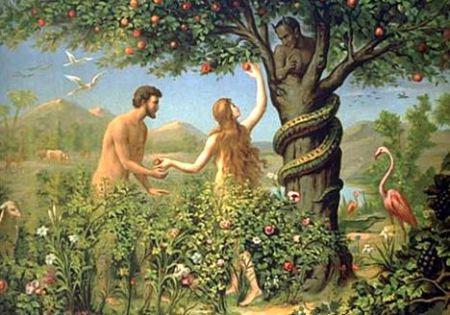 Pol, seksualnost, ljubav – Vajninger