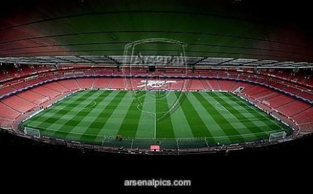Starac i more – F.C Arsenal