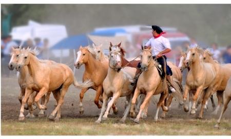 Strast prema konjičkim sportovima – Buenos Aires (3. deo)