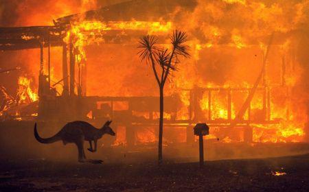 Požari u Australiji: ekološka katastrofa i kapitalistički trijumf