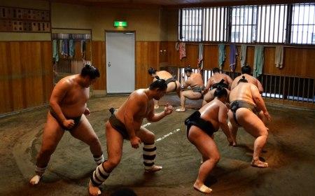 Tokio, Japan – Poseta jutarnjem treningu sumo rvača