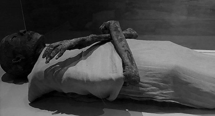 Lek, boja i đubrivo – čemu sve može poslužiti mumija?